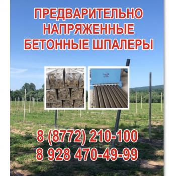 Sadoviy_stolb_17